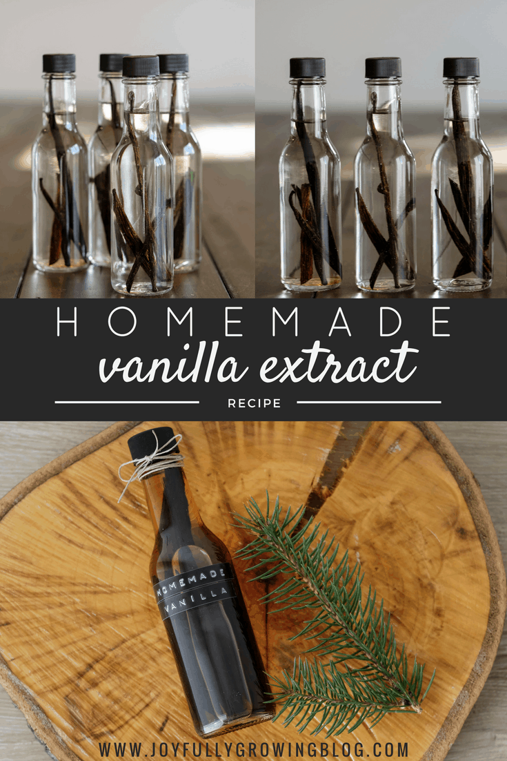 How To Make Homemade Vanilla Extract - Simple DIY Gift Idea with a Homemade Touch