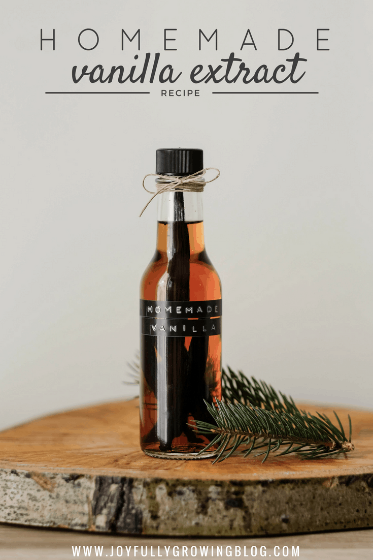 Homemade Vanilla Extract - Simple Gift Idea with a Homemade Touch