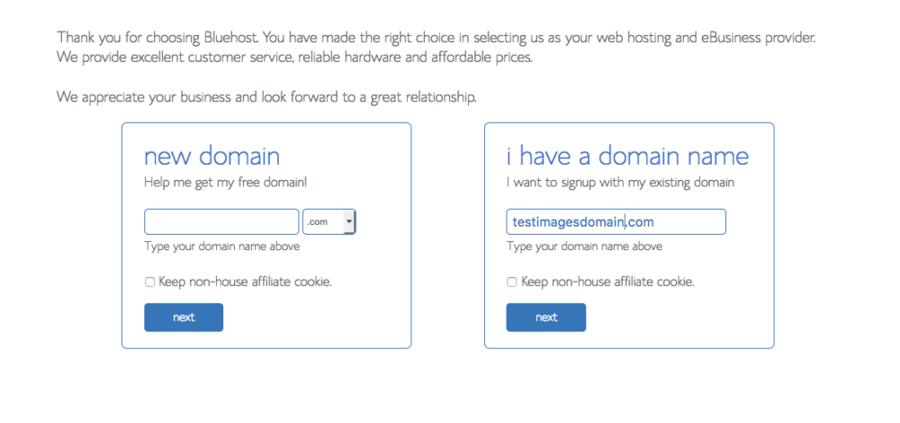 Bluehost tutorial screenshot with domain registration option