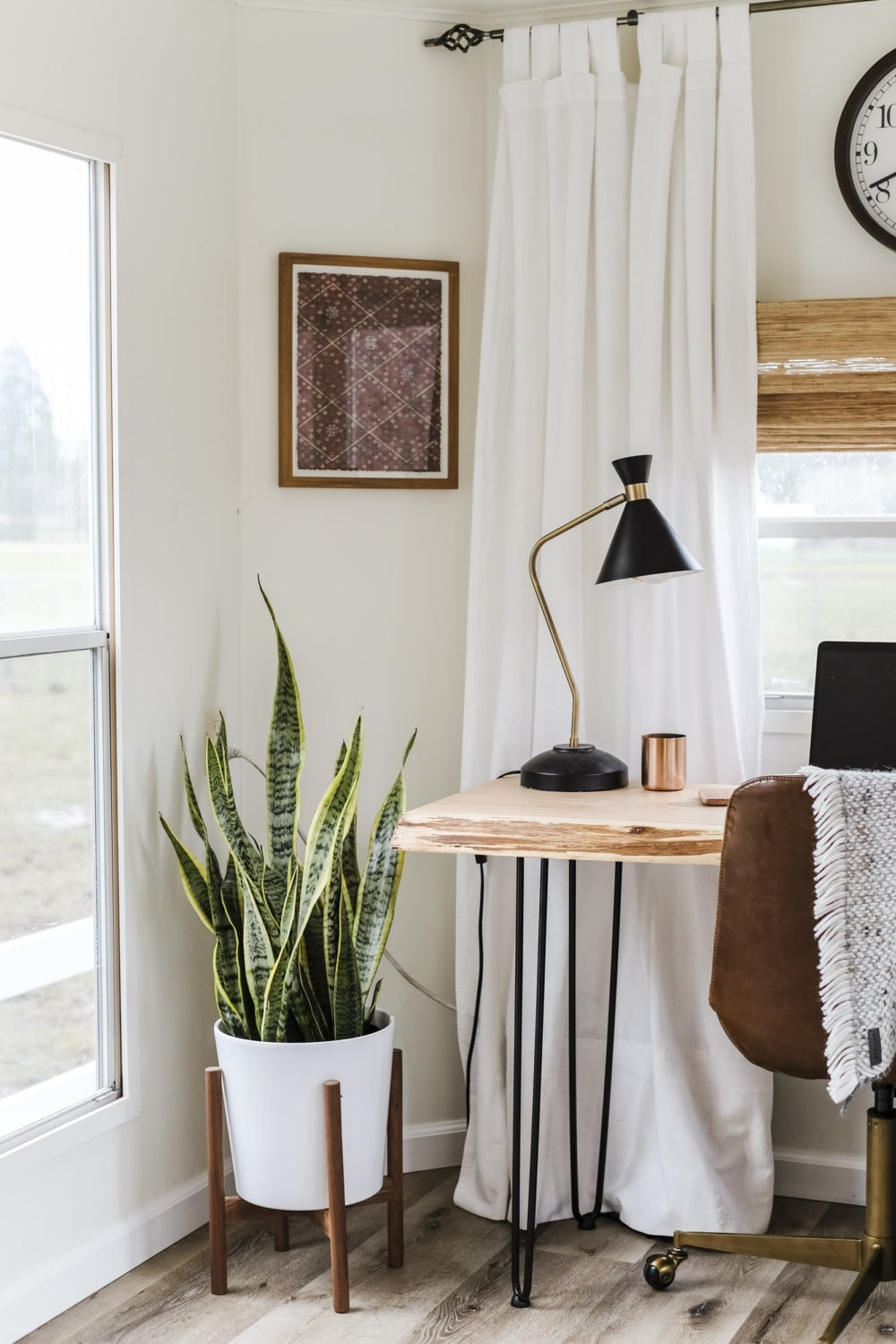 Snake plant in the corner next to a wood desk