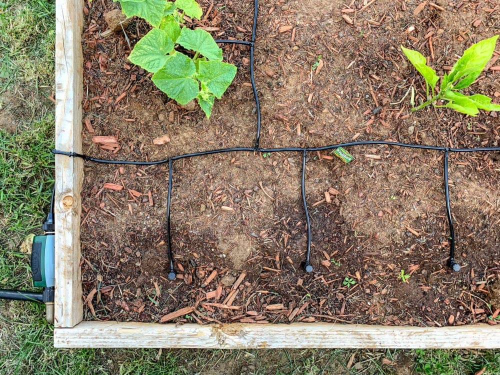 "drip irrigation system with 1/4"" drip tubing"