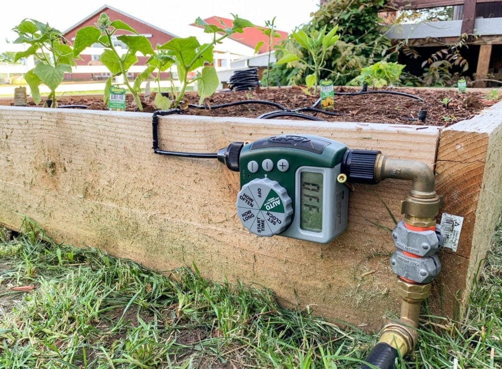 programmable watering timer on a raised garden bed for a drip irrigation system